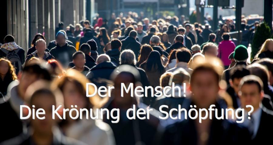 mensch-01102016