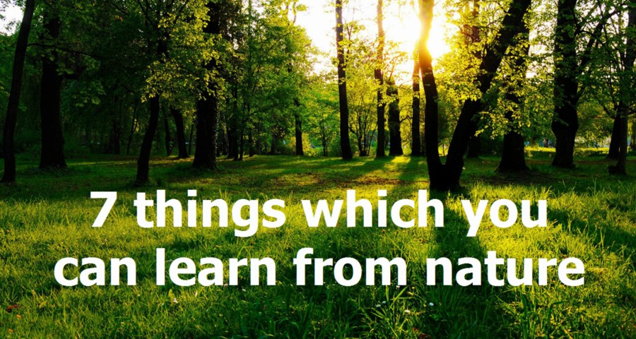 7-things-nature