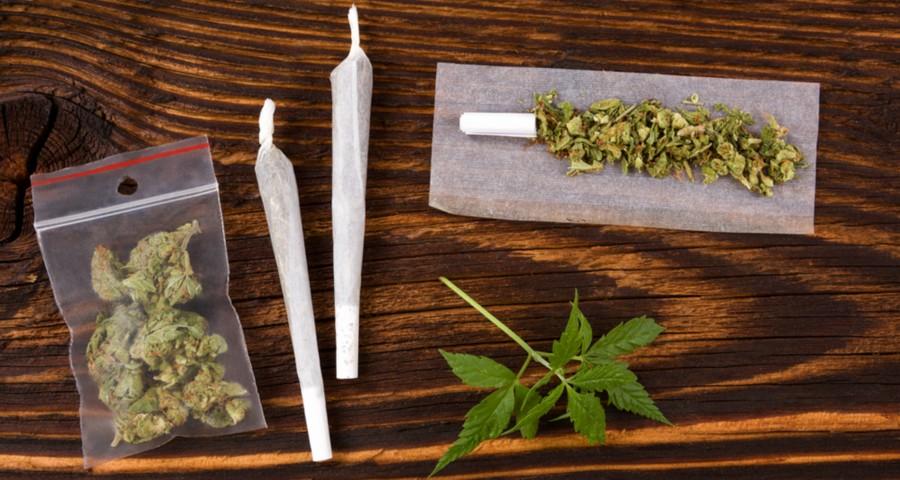 cannabis-01112016